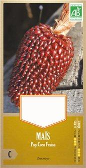 Graines de maïs fraise pop corn